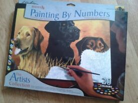New REEVES painting by numbers art set