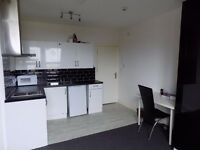 Large stylish furnished double bedsit available in Fisponds