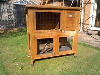 Rabbit / Guinea hutch