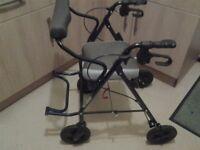 Ergo mobility trolley