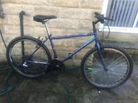 Raleigh hybrid mountain bike