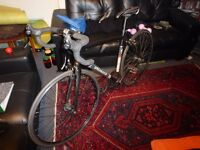 Specialized Langster 2011 Fixie Bike for Sale