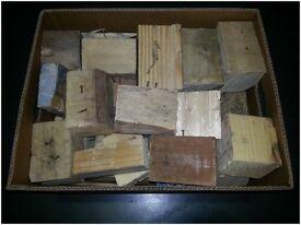 logs for wood burner or camp fire