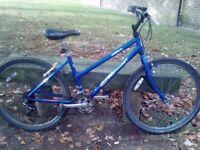 Westcoast Mountain bike only £55