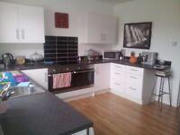 Kitchen Cabinets - White Gloss