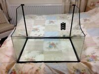 Turtle tank for sale- suitable for musk turtles