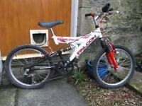 Kids Falcon BMX Bike