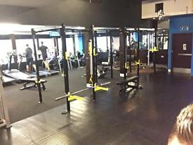 6 BAY CROSSFIT RIG *with Monkey Bars *