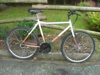 Gents/Youths Cycle, Safety Helmet, Drinks Bottle and Car Cycle Carrier