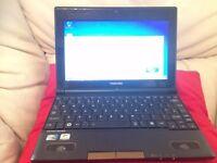 Toshiba Netbook , 10.1 inch screen, 2GB RAM, 320GB HDD, Webcam, Microsoft office.