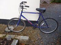 Townsend Mans Bike