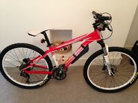 Specialized rock hopper m4