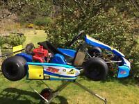 Zip Cadet Blue Storm Go Kart