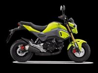 Honda MSX 125 ---- Only One Left !!!!