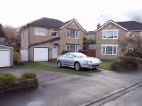 1998 Toyota Celica 1.8 SR * Factory Bodykit*Futre Classic* Becoming Collectable*