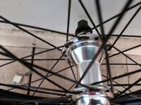 BMX 20 rear wheel (eclat, salt, freecoaster)