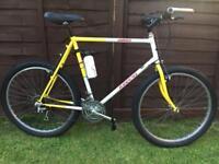 Gents Dawes mountain bike