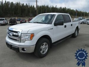 2014 Ford F-150 XLT Super Crew 4x4 - 50,833 KMs, Short Box Truck
