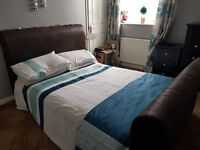 large double sleigh bed for sale