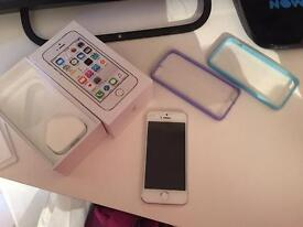 iPhone 5S, 16GB, Unlocked. Immaculate condition