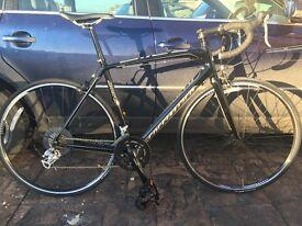 Specialised Allez 2013 Road Bike (52cm)