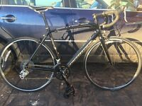 Specialised Allez 2013 Road Bike (52cm)