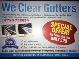 Don't Miss Out! - Gutter Clearing/Cleaning Any House Any Size!