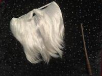 Fancy dress wizards beard with wand