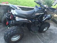 Quad in good condition but in need of new battery