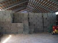 Small Square Bales, Excellent Horse Hay
