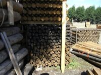 Timber fence post 75mm-100mmx1.65m