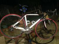 Pinnacle Aeos Carbon Road Bike. Ultegra & 105