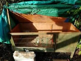 Rabbit\Guinea pig Hutch
