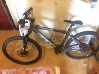 Felt Q720 mountain bike