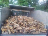 tipper full ready chopped logs £180