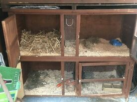 extra large rabbit hutch two storey