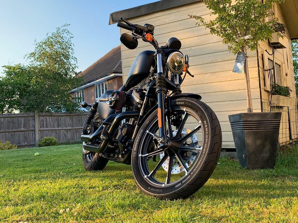Harley Davidson Sportster Iron 883   in Croydon, London   Gumtree