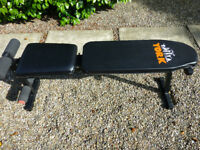 York incline/decline weights bench with dumbells and instructions