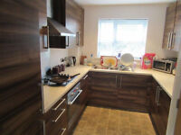3 Bedroom flat with the garden in Forest Gate area dss accepted with guarantor