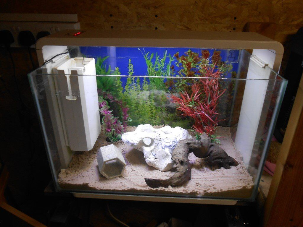 765a42944a1 Superfish Home 80 Aquarium with everything needed for tropical