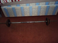 Solid 8kg Chrome Spinlock Barbell With Cast Weights