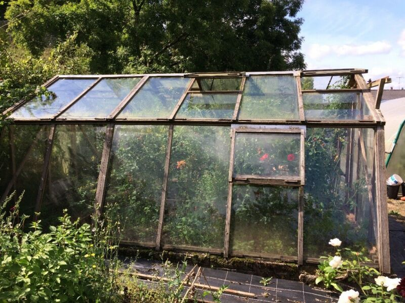 Cedar Greenhouse 12' x 16', used for sale  Coleford, Gloucestershire