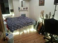 Double room in dennistoun, with vegan flatmate