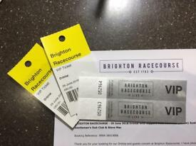 VIP Tickets for Orbital @ Brighton Racecourse