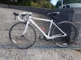 alloy road racing bick 20in frame