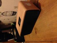 iPod/iPhone docking speaker system