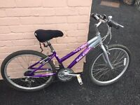 Well maintained girls bike,13 inches.