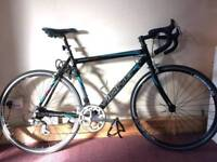 Viking Peloton Gents Road Race Bike 14 Speed
