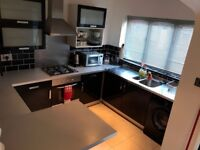 2 Bed Semi detached modern house with parking £550, No Fees, low Deposit - S4 7DP