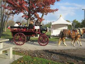 Horse drawn wagon rides Windsor Region Ontario image 1